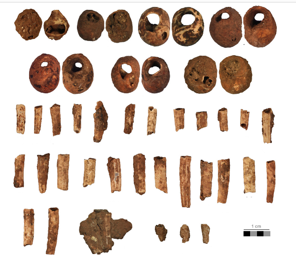 Collar de época Gravetiense. Fotografía: The role of shellfish in hunter–gatherer societies during the Early Upper Palaeolithic: A view from El Cuco rockshelter, northern Spain (